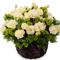 싱그러운 꽃향기~